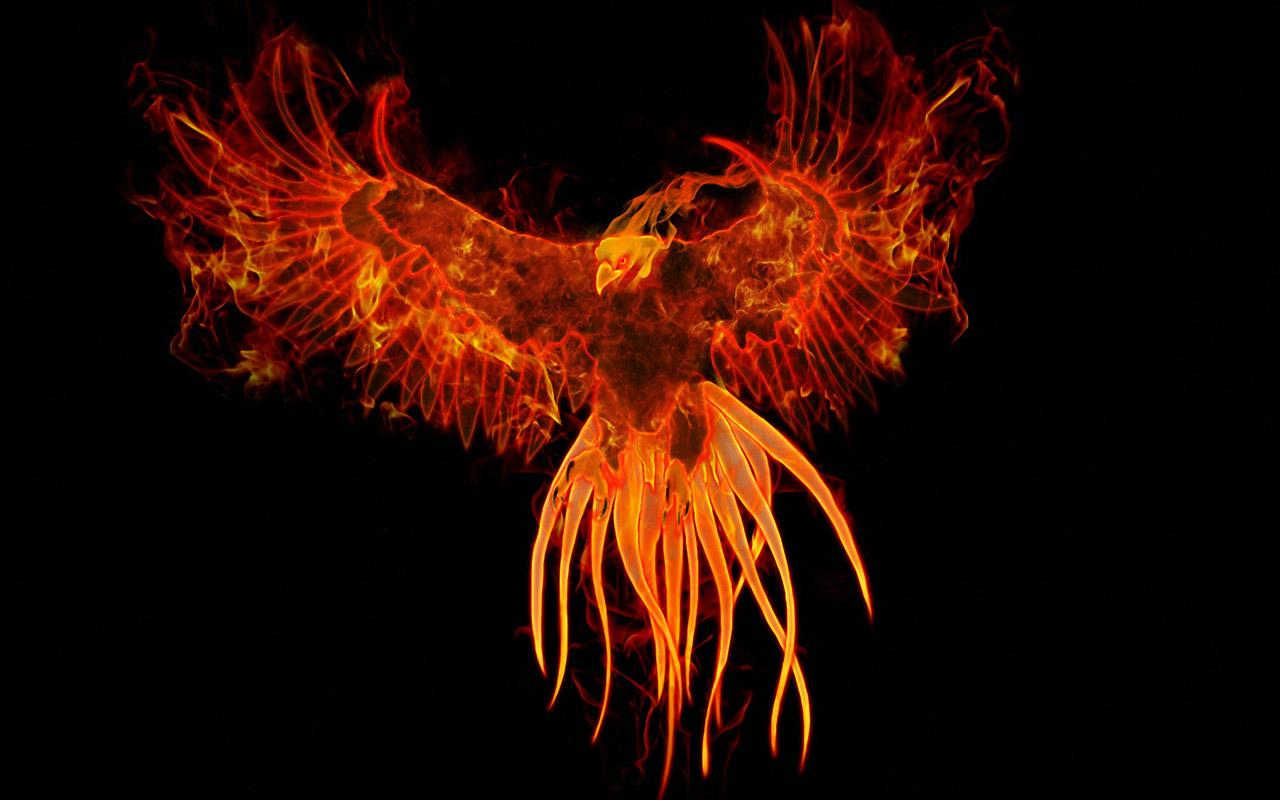 phoenix live wallpaper android apps on google play