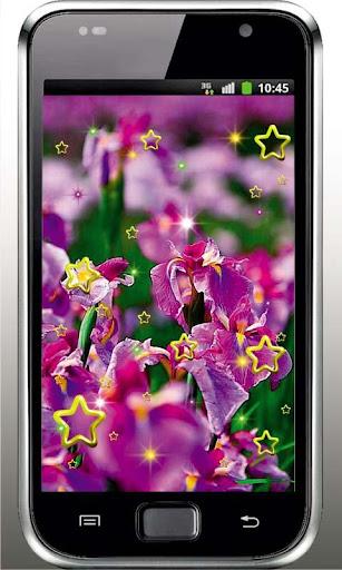 Irises China Garden HD LWP