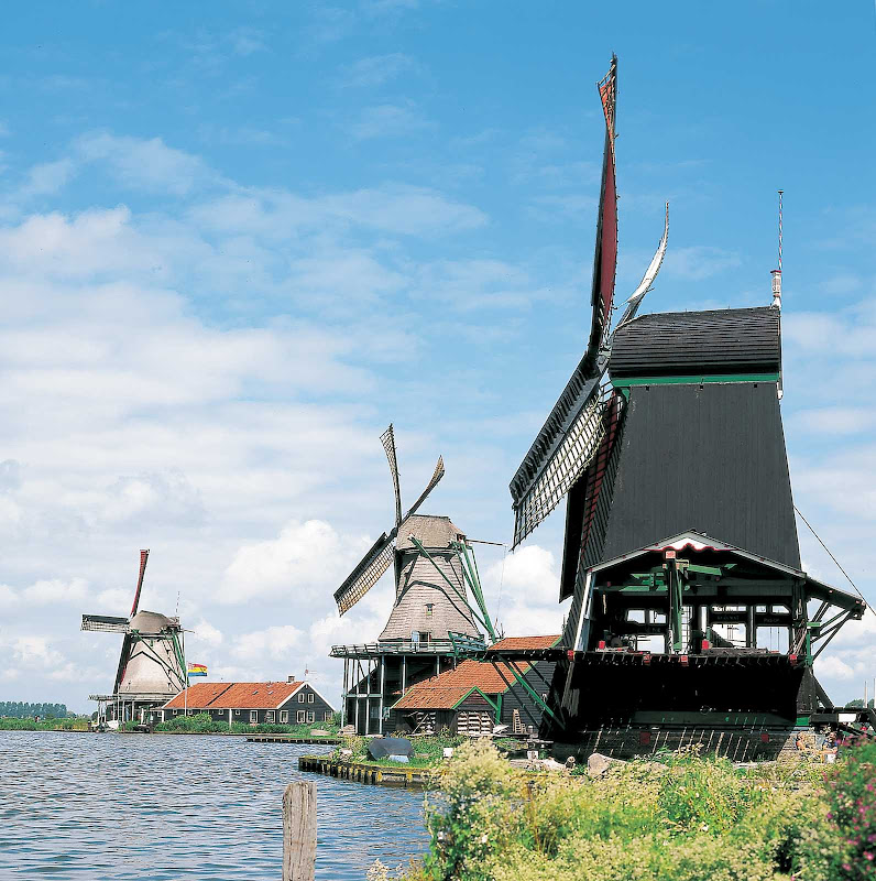 Windmills line the landscape at Zaanse Schans, a popular attraction for visitors near Amsterdam.