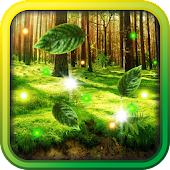 Forest Gallery HD 2014 LWP