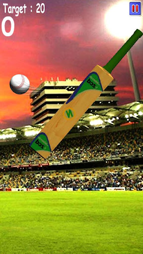Cricket Game Tapping 3D