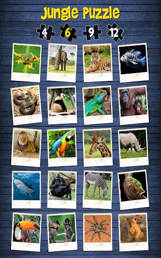 叢林之謎 - 為孩子們的樂趣