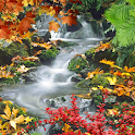 Forest, waterfall, lake icon