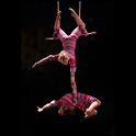 Artists : Circus logo
