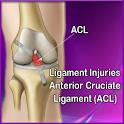 Anterior Cruciate Ligament logo