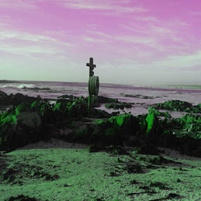 by Debra Newnham - Landscapes Sunsets & Sunrises
