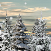 Winter Snow Trees 3D LWP