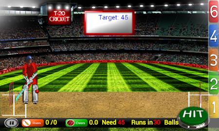 Cricket Fever 1.0.1 screenshot 1607251