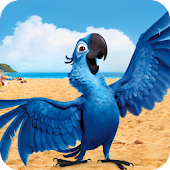 Brazil Birds Game & Wallpaper