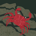 Who Lives in the Sea? icon