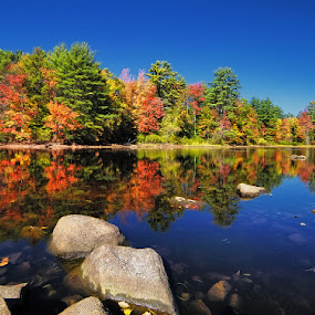 Fall Reflections II by Michael Otter - Landscapes Waterscapes