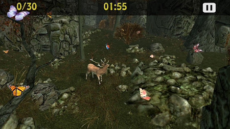 Butterflies Catch Craze 3D 1.0 screenshot 6188