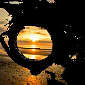 FRAMED by Bethany Kenney - Landscapes Sunsets & Sunrises ( sunrise )