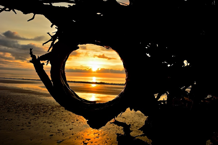 FRAMED by Bethany Kenney - Landscapes Sunsets & Sunrises ( sunrise )