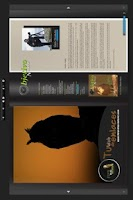 Screenshot of objetivonatural.com