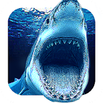 Angry Shark Evo