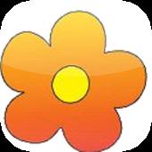 Flower Power bloemen