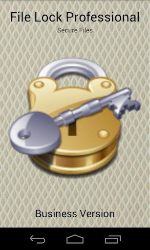 File Lock Professional