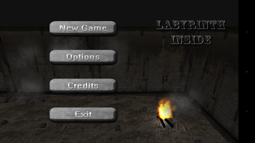 Labyrinth Inside - Horror 3D