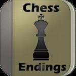 Chess Endings