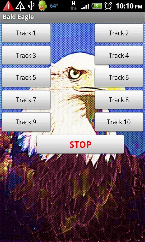 Bald Eagles American Pride- screenshot