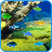Free SeaBed Fishes LWP
