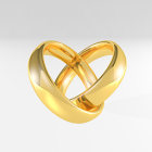 The Wedding Guide icon