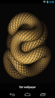 Screenshot of Snake Live Wallpaper
