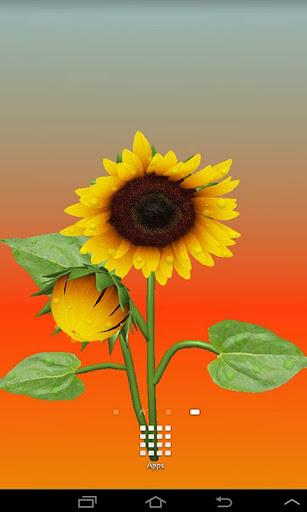 3D Sunflower Live Wallpaper