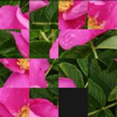 Square puzzle 4x4