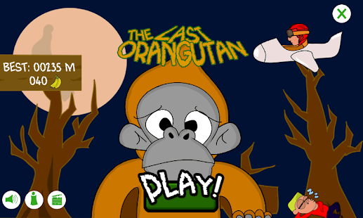 The Last Orangutan