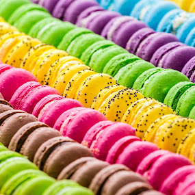 Macaroons by Lefri Kristianto - Food & Drink Candy & Dessert ( dessert, macaroons )