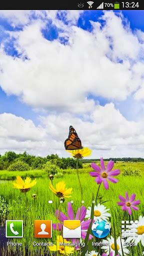 Butterfly Live Wallpaper HD 3