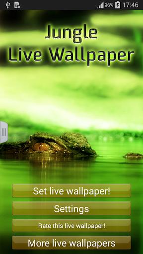 丛林动态壁纸 個人化 App-愛順發玩APP