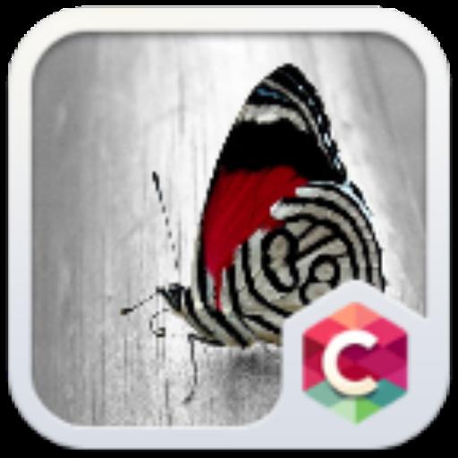 美丽蝴蝶手机主题——畅游桌面 個人化 App LOGO-APP試玩