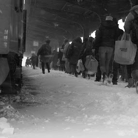 Frozen: The Departure by Florin Cepraga - People Street & Candids ( , people, crowd, humanity, society )