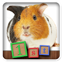 1st Games Pet Animals for Kids icon