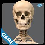 Skeletal Anatomy Game