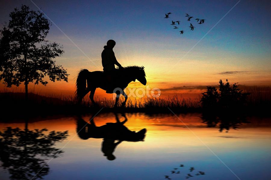 Dark Horse by Alfa Oldicius - Digital Art Animals
