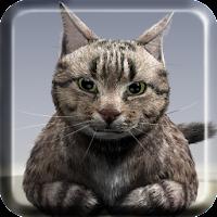 Talking Reality Cat 1.12