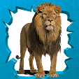 AR-ANIMALS .. file APK for Gaming PC/PS3/PS4 Smart TV