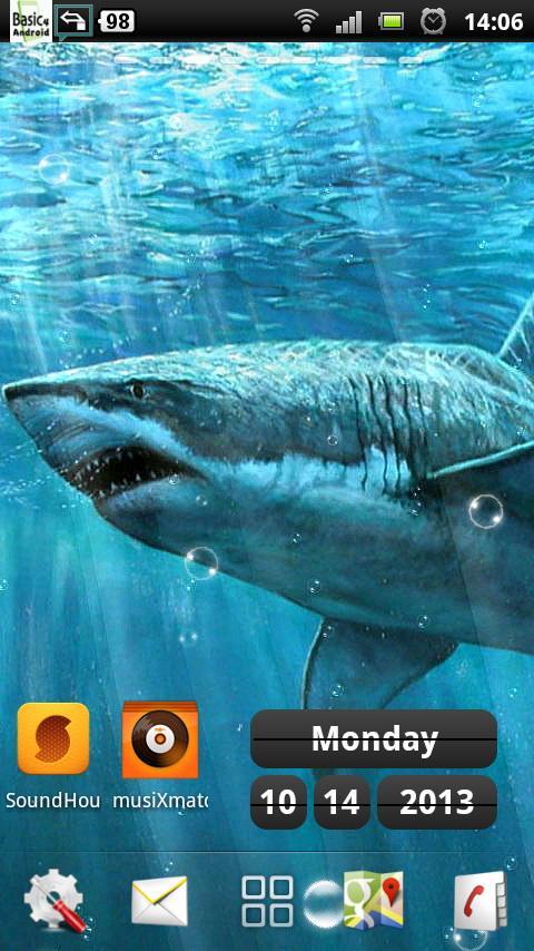 live shark wallpaper - photo #43