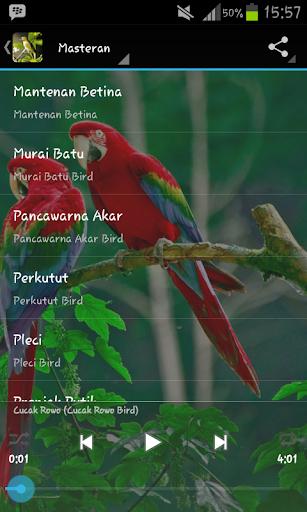 Masteran Kicau Burung Juara