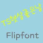 TS sunnyday  Korean Flipfont icon