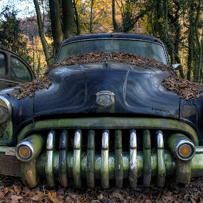 old times by Greg Warnitz  - Transportation Automobiles ( car, old, oldtimer, abandoned, decay )