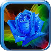 Galaxy S4 Rain Roses