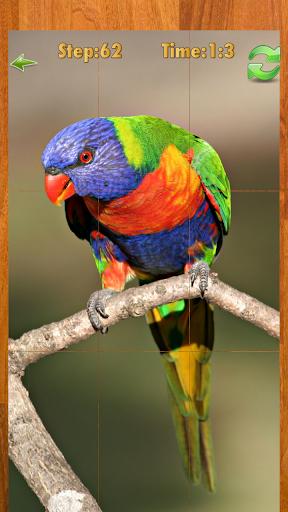 Bird puzzle game