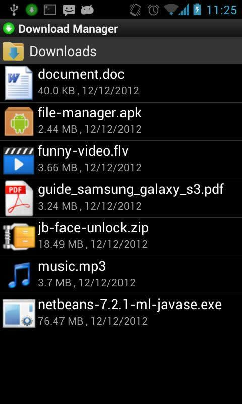 Download Manager- screenshot