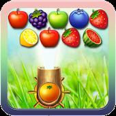 Dream fruit shoot
