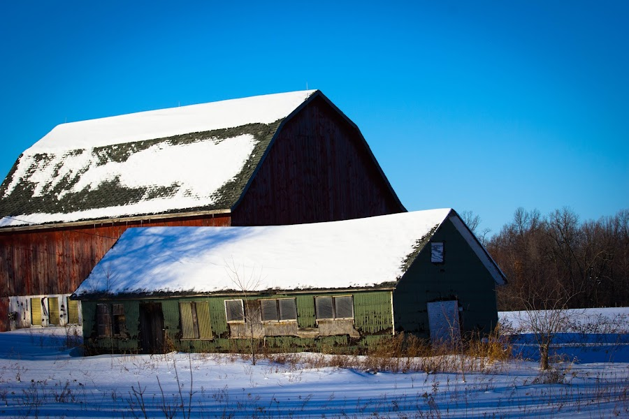 barn by William Boyea - Buildings & Architecture Decaying & Abandoned ( farm, winter, barn, blue, snow,  )